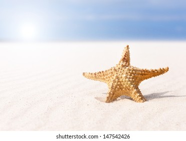 Summer background. Starfish on sand and blue sky.