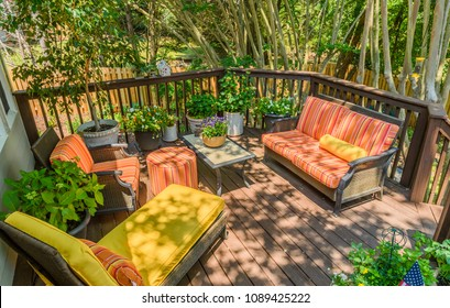 Summer Backyard Oasis