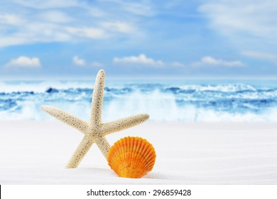 Summer and Beach Concept. Sandy Beach with Starfish