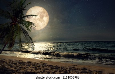 summer beach at ocean at night