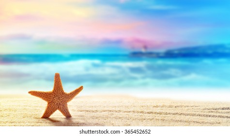Summer beach with a starfish on a background of the tropical ocean and the beautiful sky