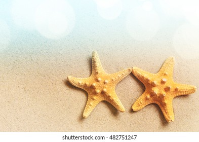 Summer beach. Starfish  on the sand. Top view.