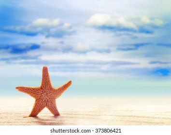 Summer beach. Starfish  on a sandy beach. The ocean, the beautiful sky and clouds.