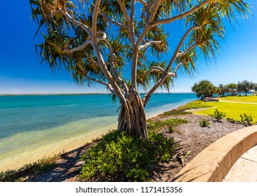 Summer beach with trees on the west side of Bribie Island, Queensland, Australia