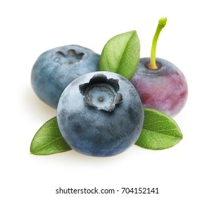 Summer berry fruit. Berries. Blueberry Isolated on White Background