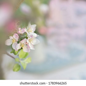 Summer blossoming delicate flowers on festive background, pastel and soft bouquet floral card