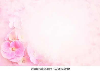 Summer blossoming delicate hydrangea, blooming flowers and petals festive background, pastel and soft floral frame card