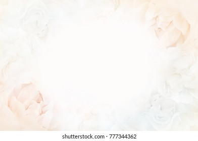 Summer blossoming delicate peony frame, blooming peonies flowers festive background, pastel and soft floral card, selective focus