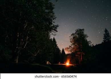 Summer camp in the wild forest at night with tent and campfire.