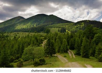 Summer in Carpathian mountains - Shutterstock ID 1128448682