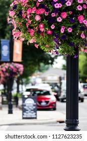 Summer City street