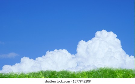 Summer Clouds (Cumulonimbus) and Grasslands