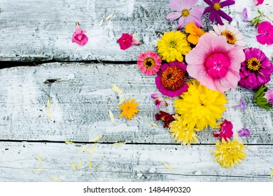 summer colorful flowers over rustic white background