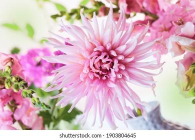 Sommerzusammensetzung mit rosafarbenen Blumen, Nahaufnahme