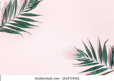 Summer composition. Tropical palm leaves on pastel pink background. Summer concept. Flat lay, top view, copy space
