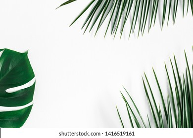 Summer composition. Tropical palm leaves on white background. Summer concept. Flat lay, top view, copy space