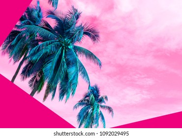 Summer concept of coconut tree on the beach fashion color style
