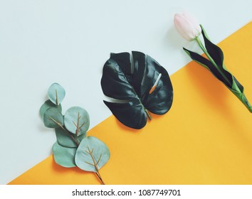 Summer concept, creative flat lay of leaves and flower on yellow and white background