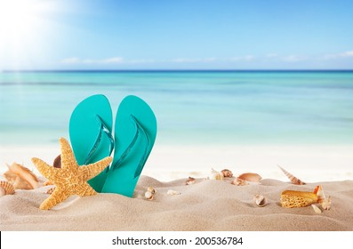 Summer concept with sandy beach, shells and blue sandals