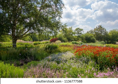 Summer country garden landscape. Colorful picturesque horticulture scene with beautiful flowers, gree trees and plants. The art of gardening.