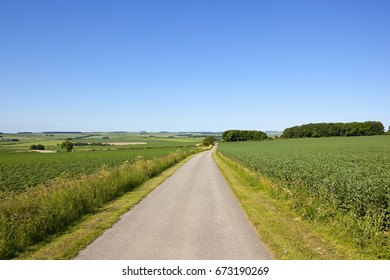 a summer country road through agricultural patchwork fields in the yorkshire wolds under a blue sky