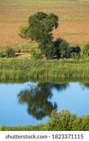 Summer countryside ladscape with Pivdennyi Buh river, Mykolaiv Region, Ukraine.