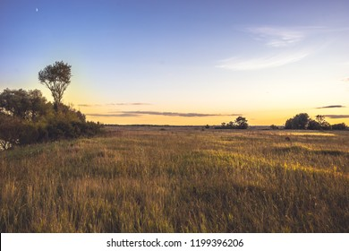 Summer countryside landscape sunset at golden summer flatland field with flowers and dramatic moody sky with moon golden hour