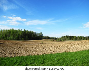 Summer day and blue sky, green trees and green grass and flowers, beautiful sunny day , Treated earth, field brown and across the blue sky and white light clouds