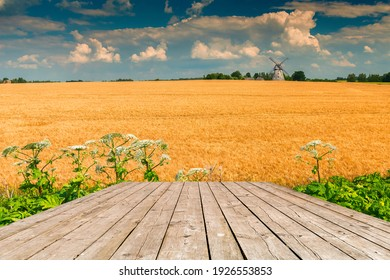 Summer day on field with ripening wheat and windmill on horizon, wooden board as copy space