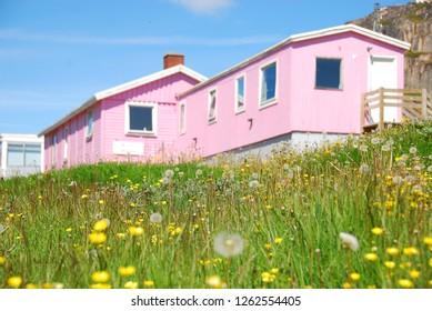 summer day in qaqortoq