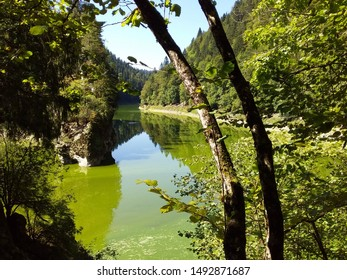 Summer at Doubs river, Jura, Switzerland