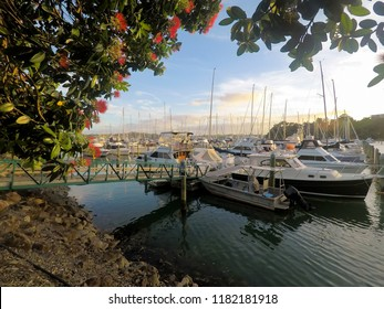 Summer evening at Doves Bay, Kerikeri marina in Bay of Islands, Far North District, Northland, North Island, New Zealand, NZ with pohutukawa flowers in foreground