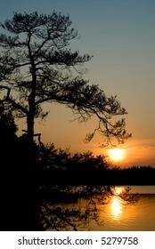 Summer Evening in Kuusisaari, Helsinki