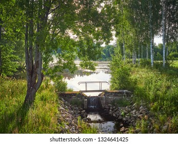 Summer evening landscape of the forest with a wooden footbridge across a small stream flowing among bushes and trees. Reflection of sun  in the water beside the tree. Beautiful ethereal backlight.