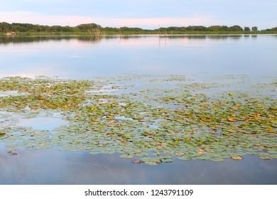 Summer evening on Shabbona Lake in northern Illinois