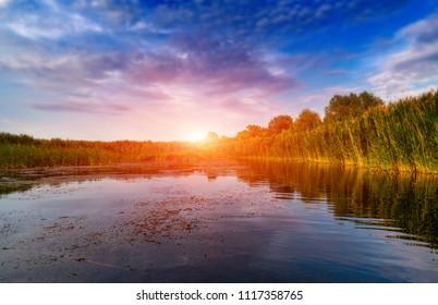 Summer evening scene on lake