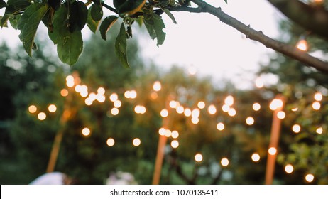 Summer evening wedding ceremony