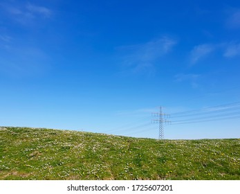 Summer field with flowering daisies and dandelions and power pylon in the distance, tranquil summer landscape.