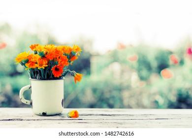 summer field garden flowers opendoor