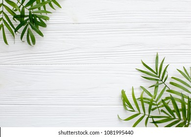 summer flat lay. fresh palm leaves border on white wooden background with space for text. top view. summer vacation concept. travel and wanderlust