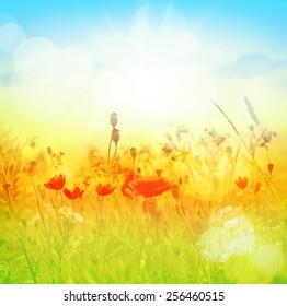 Summer. Flower background.
