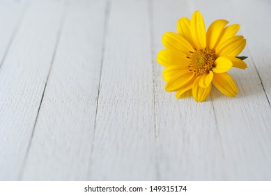 summer flower on wooden table background
