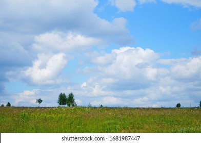 Summer flowering meadow in the Carpathian mountains under a blue sky on a sunny summer day