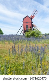 Summer flowers by an old wooden windmill at the island Oland in Sweden