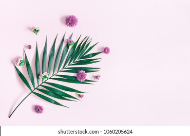 Summer flowers composition. Green tropical leaf and pink flowers on pink background. Summer concept. Flat lay, top view, copy space