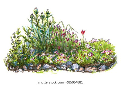 Summer flowers and grass. Flowerbed with different plants and stones. Postcard template