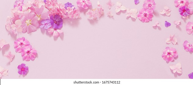 summer flowers on paper background