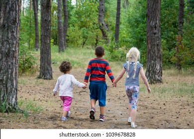 In the summer in the forest a boy with two girls is walking along the road. He holds their hands.