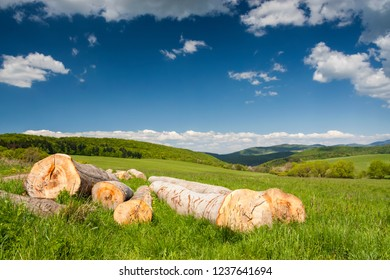 Summer forest and meadows landscape in Slovakia with big wooden logs in the foreground