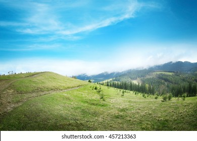 Summer forest on mountain slopes - Shutterstock ID 457213363
